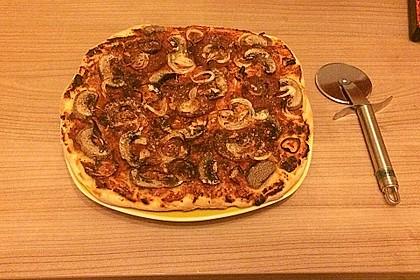 Pizzateig 76