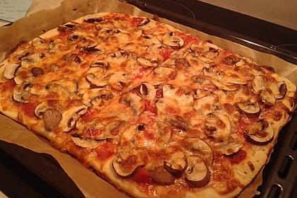 Pizzateig 97
