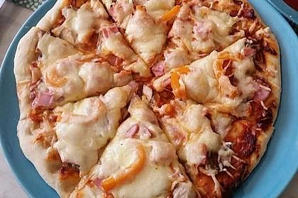 Pizzateig 166