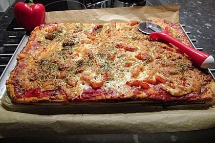 Pizzateig 100