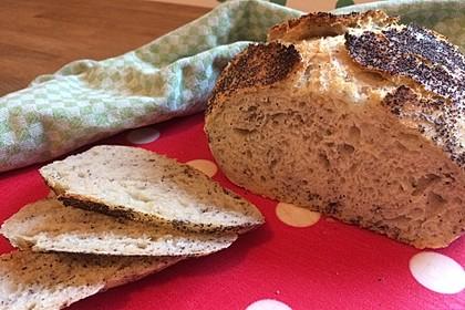 No Knead Bread 24