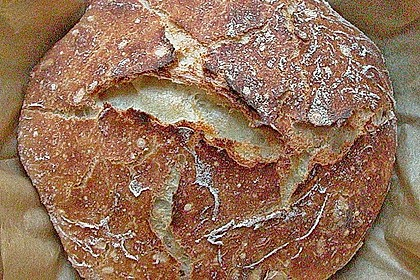 No Knead Bread 74