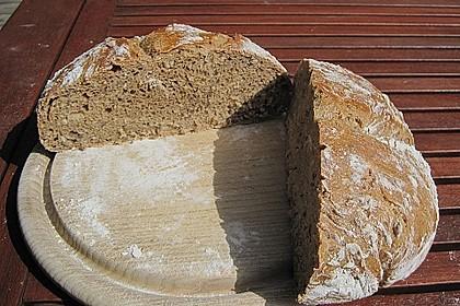 No Knead Bread 214