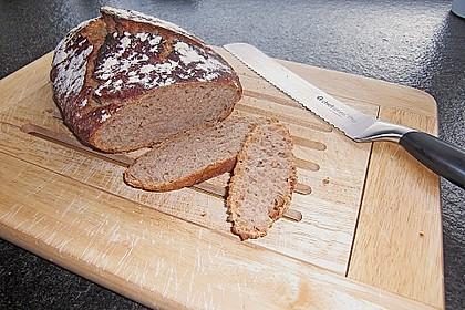 No Knead Bread 184