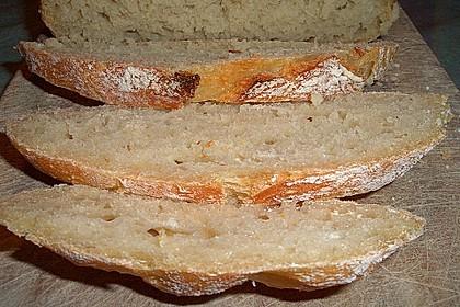 No Knead Bread 224