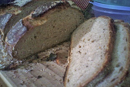 No Knead Bread 246