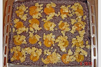 Aprikosen - Mohn - Hefeteigkuchen