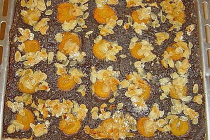 Aprikosen - Mohn - Hefeteigkuchen 3