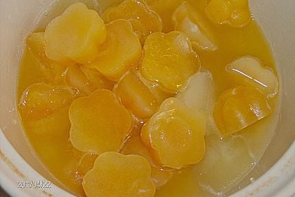 Kandierter Ingwer und Ingwer - Orangensirup 19