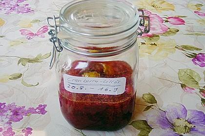 Cranberry - Likör 8