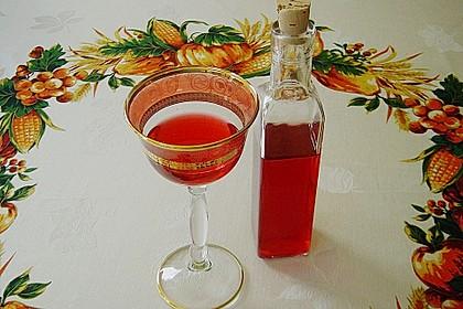 Cranberry - Likör 1