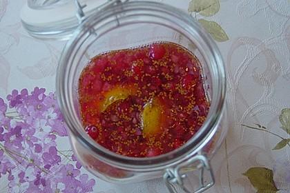 Cranberry - Likör 5