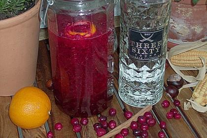 Cranberry - Likör 3