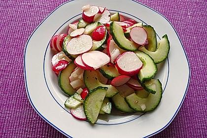 Radieschen - Gurken - Salat 4