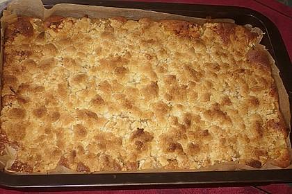 Liebster Apfel - Streuselkuchen in zwei Variationen 9