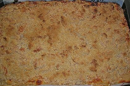 Liebster Apfel - Streuselkuchen in zwei Variationen 21