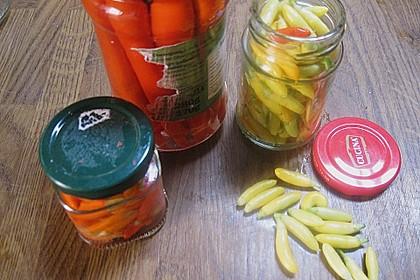 Peperoni haltbar machen 10