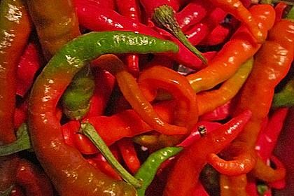 Peperoni haltbar machen 8