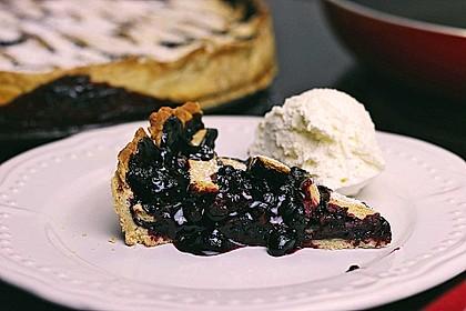Best Blueberry Pie 18