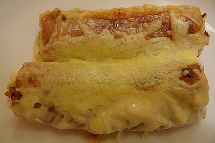 Cannelloni mit Hack - Schafskäse - Füllung 5