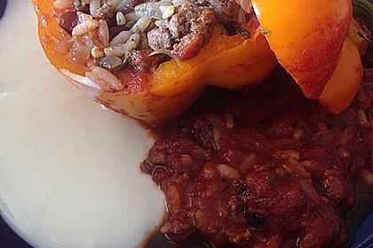 Gefüllte Paprika mit Joghurtsauce 48