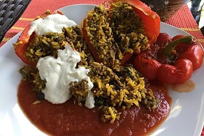 Gefüllte Paprika mit Joghurtsauce 46