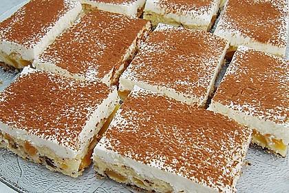 Schoko - Aprikosen - Kuchen 2