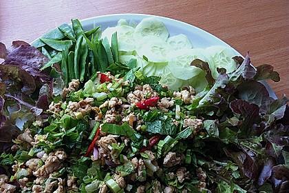 Laab Gai - Thailändischer Hähnchensalat 3