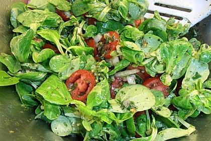 Gemischter Feldsalat mit Himbeeressig - Dressing 15
