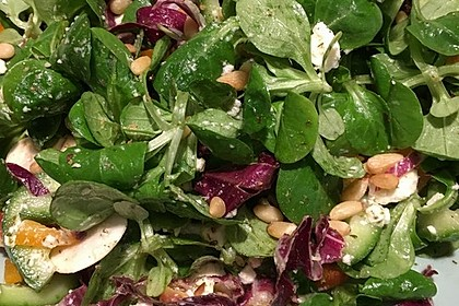 Gemischter Feldsalat mit Himbeeressig - Dressing 6