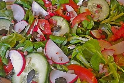 Gemischter Feldsalat mit Himbeeressig - Dressing 11