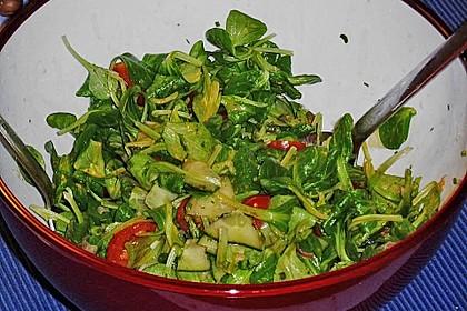 Gemischter Feldsalat mit Himbeeressig - Dressing 21
