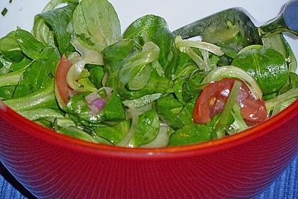 Gemischter Feldsalat mit Himbeeressig - Dressing 22