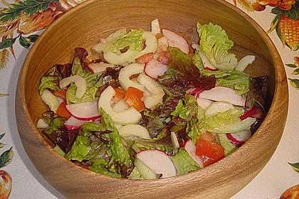 Gemischter Feldsalat mit Himbeeressig - Dressing 23