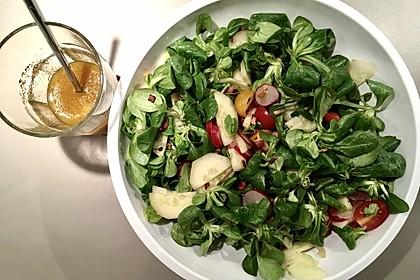 Gemischter Feldsalat mit Himbeeressig - Dressing 20