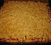 Apfel - Zimt - Streuselkuchen (Bild)