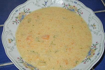 Schnelle Gemüsesuppe 25
