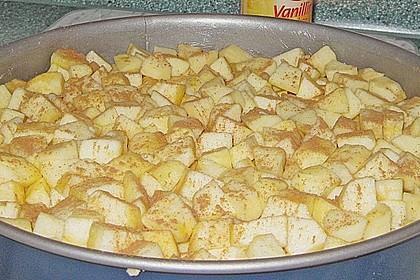 Apfel - Krümmelkuchen 17