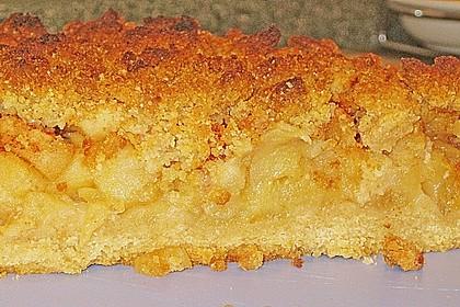 Apfel - Krümmelkuchen 8