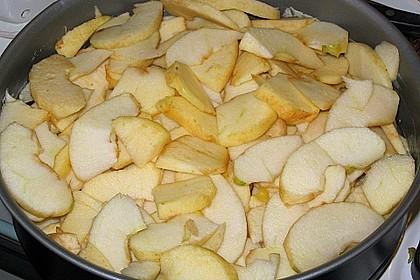 Apfel - Krümmelkuchen 18