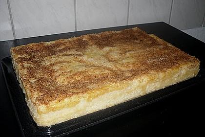 Buttermilch-Kokos-Kuchen 23