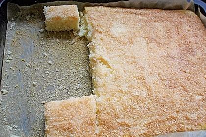 Buttermilch-Kokos-Kuchen 76