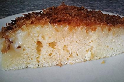 Buttermilch-Kokos-Kuchen 34