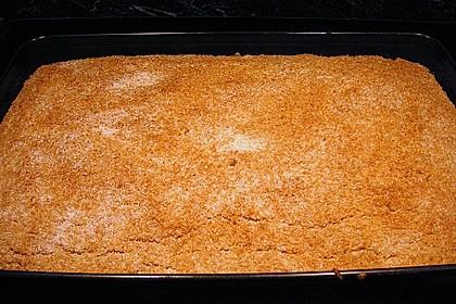 Buttermilch-Kokos-Kuchen 28