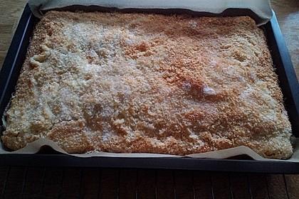 Buttermilch-Kokos-Kuchen 3
