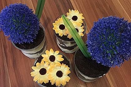 Blumenerde 7