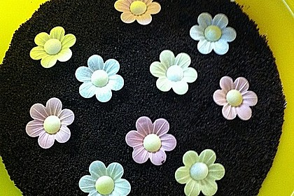 Blumenerde 28