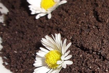 Blumenerde 30
