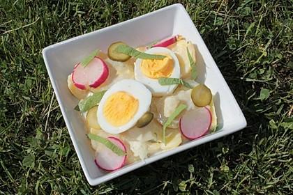 Kartoffelsalat mit leichtem Buttermilch - Joghurt - Dressing 4