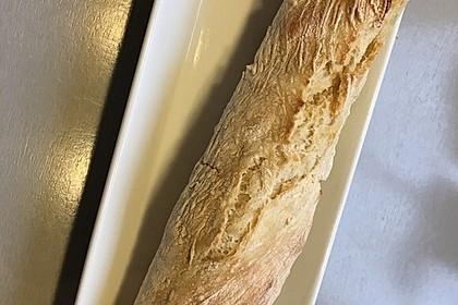 Baguette Parisienne 47